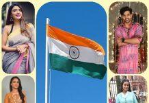 Zee TV Actor's