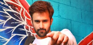 TV Actor Pearl V Puri